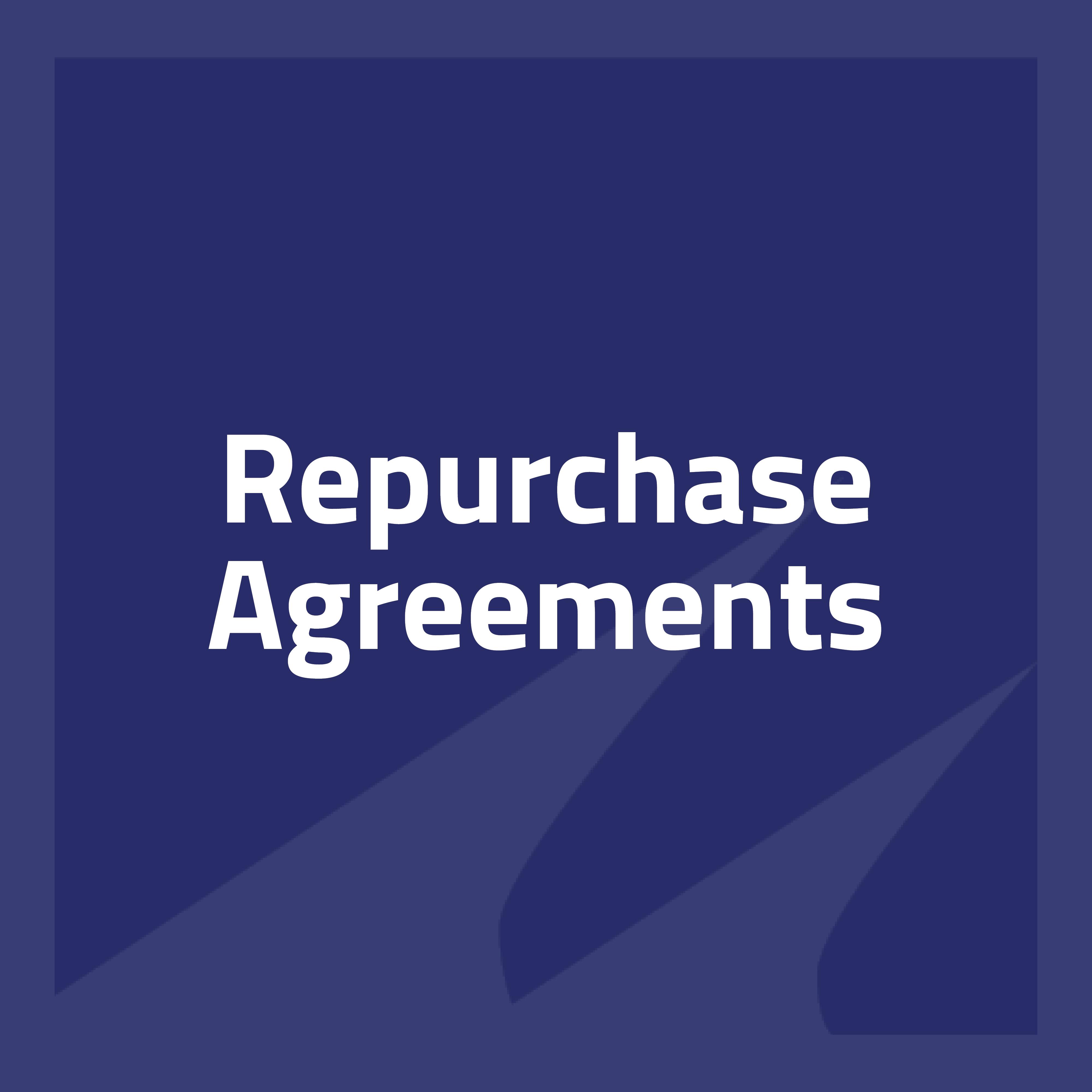 RepurchaseAgreements-1